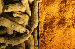tumeric-root-powder